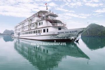 Megasun tại Tàu du lịch Sealife