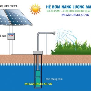 bơm nước điện năng lượng mặt trời